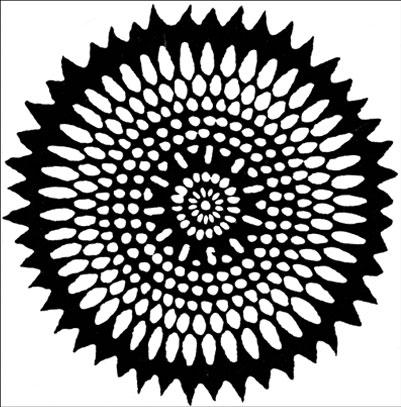 emery cie papiers peints au metre motifs grosse fleur. Black Bedroom Furniture Sets. Home Design Ideas