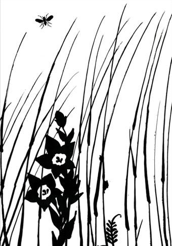emery cie papiers peints au metre motifs herbes folles d finition page 02. Black Bedroom Furniture Sets. Home Design Ideas