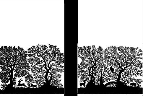 emery cie papiers peints au metre motifs la foret d finition page 03. Black Bedroom Furniture Sets. Home Design Ideas