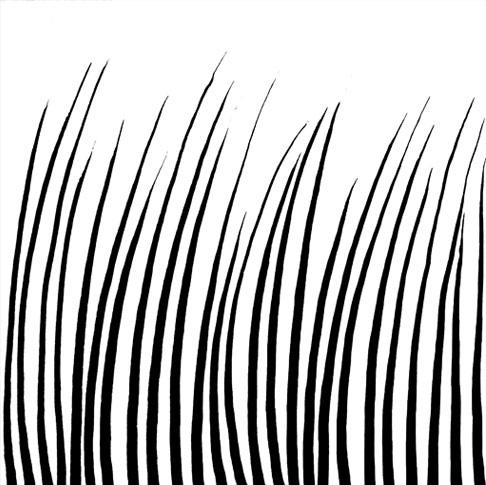 emery cie papiers peints au metre motifs herbes folles sans anecdotes. Black Bedroom Furniture Sets. Home Design Ideas
